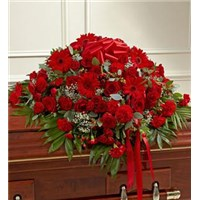 91228z_Large.jpg red casket